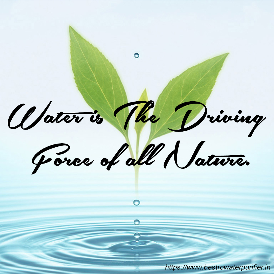quotes about the importance of water